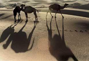 0104 Tr Marokko4