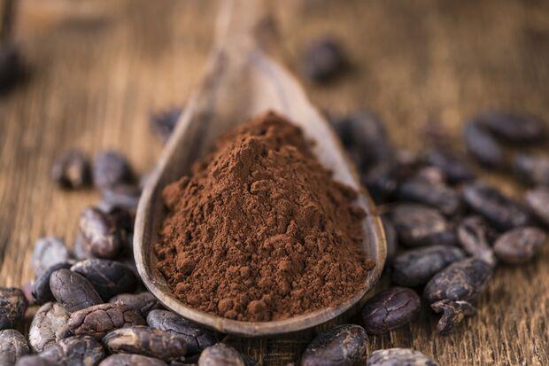 100 Gramm Kakao enthält Milligramm 495 Magnesium