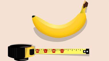 14,5 cm misst der Penis eines Deutschen im Durchschnitt (im erigierten Zustand)