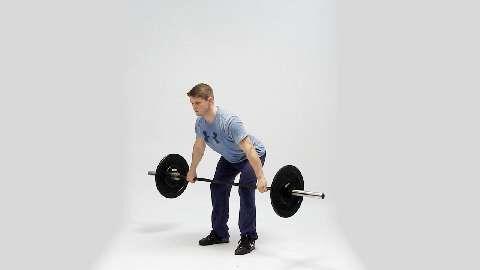 2 klassische Gewichtheben-Übungen - Gym-Kurse im Test
