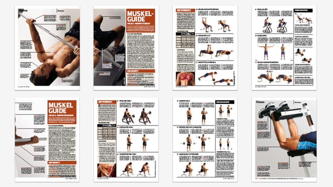 Alle Teile des Muskel-Guides in einem PDF
