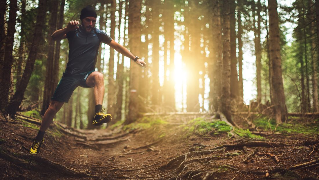Animal Moves: Mit diesem intensiven Ganzkörpertraining werden Sie tierisch fit
