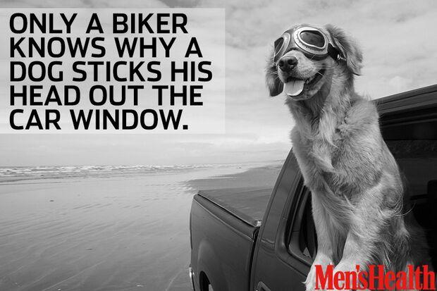 Biker Zitate