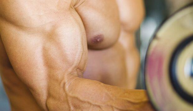 Carboloading füllt den Glykogenspeicher in Muskeln maximal auf