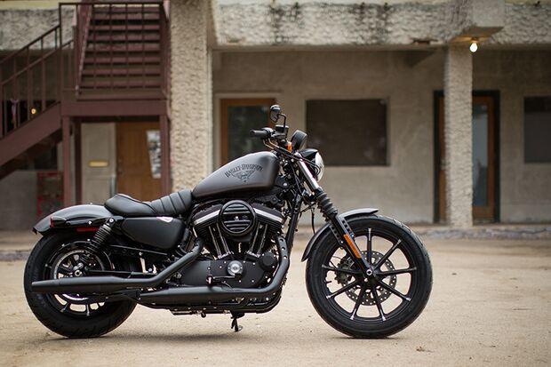Cruiser und Chopper 2015: Harley Davidson Iron 883