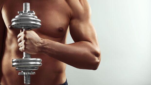 Das Männerhormon Testosteron trägt zum Muskelaufbau bei