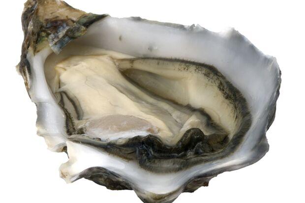 Das Muschelfleisch der Austern zählt zur gesunden Ernährung