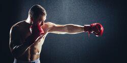 Das beste Workout für Boxer
