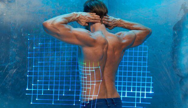 Der Deltamuskel spannt sich über dem komplexesten menschlichen Gelenk und bildet den äußersten Punkt der V-Form