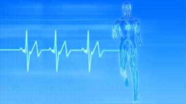 Der Puls gibt keine Informnationen zum Kalorienbedarf