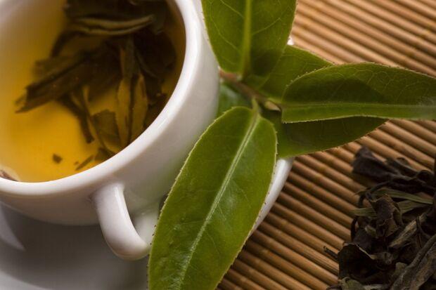 Der grüne Tee gehört zur gesunden Ernährung dazu