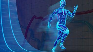 Der menschliche Körper ist ein Phänomen - wir erklären Ihnen wie er funktioniert