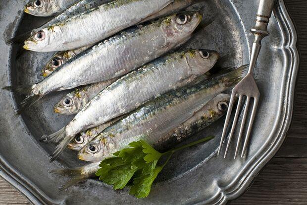 Der vitaminreichste Fisch: die Sardine