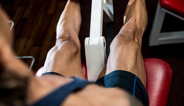 Der vordere Oberschenkel ist der stärkste Muskel des Körpers