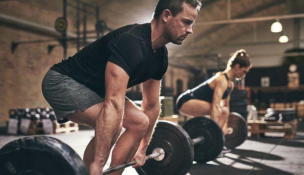 Die Muskeln sind die Fettverbrennungsmaschinen des Körpers