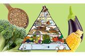 Die VEBU Eenährungspyramide hilft beim Einstieg in ein vegetarisch-veganes-Leben
