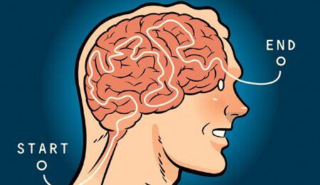 Die Wege durchs Hirn sind unergründlich