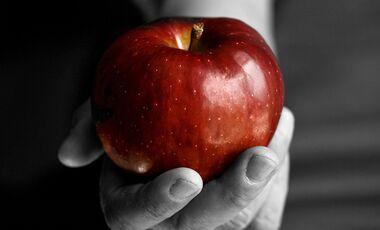 Die beliebtesten Apfelsorten