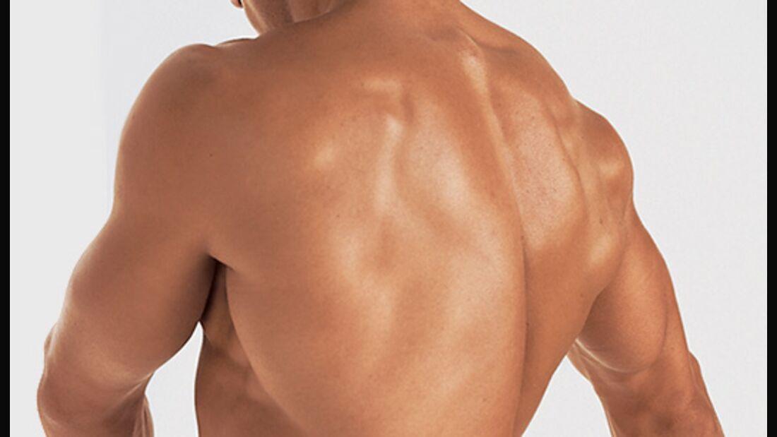 Die besten Übungen der Welt für den Rücken