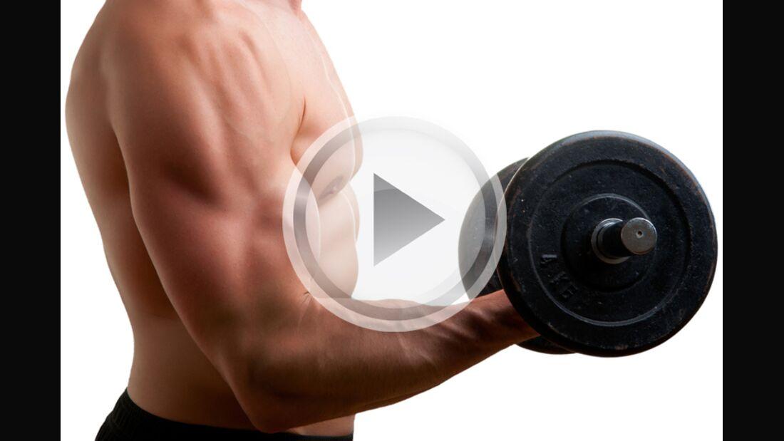 Die besten Übungen für XL-Arme im Video