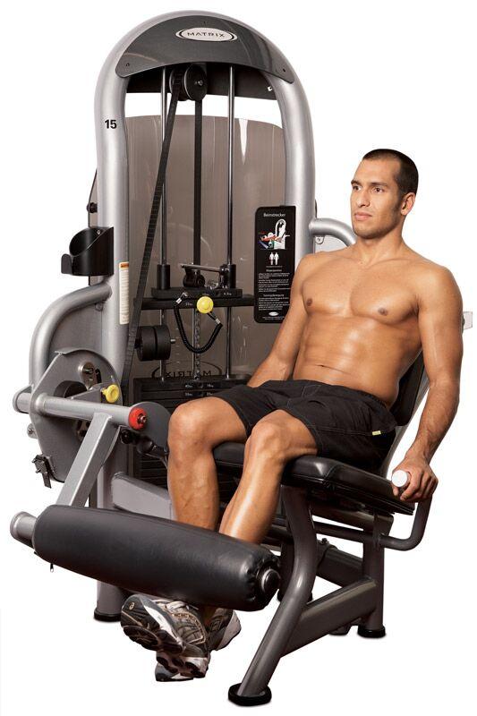 Die effektivsten Übungen fürs Fitness-Studio