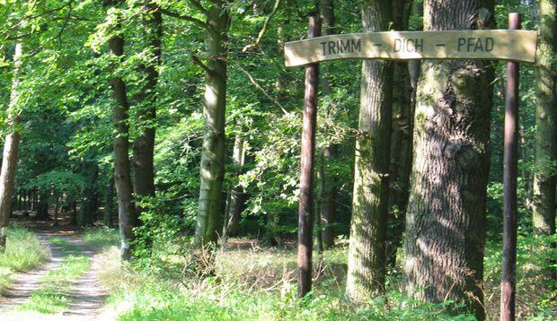 Die idyllische Waldlage des Parcours in Klötze garantiert eine entspannte Trainingsatmosphäre