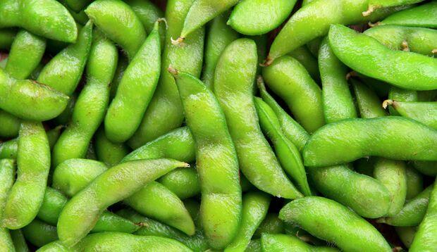 Edamame liefern rund 30 Prozent pflanzliches Protein