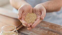 Es gibt viele leckere Getreidesorten, es muss nicht immer Reis sein