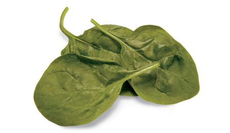 Feldsalat enthält auch magenberuhigendes Baldrianöl