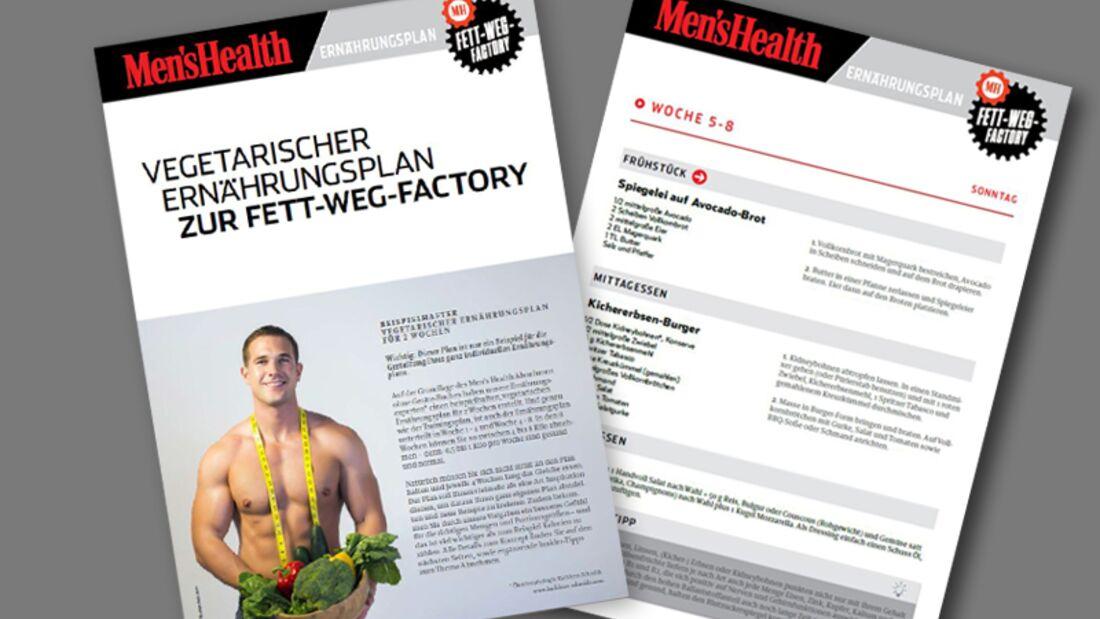 Fett-weg-Factory 2016: Vegetarischer Ernährungsplan zum Abnehmen als Download