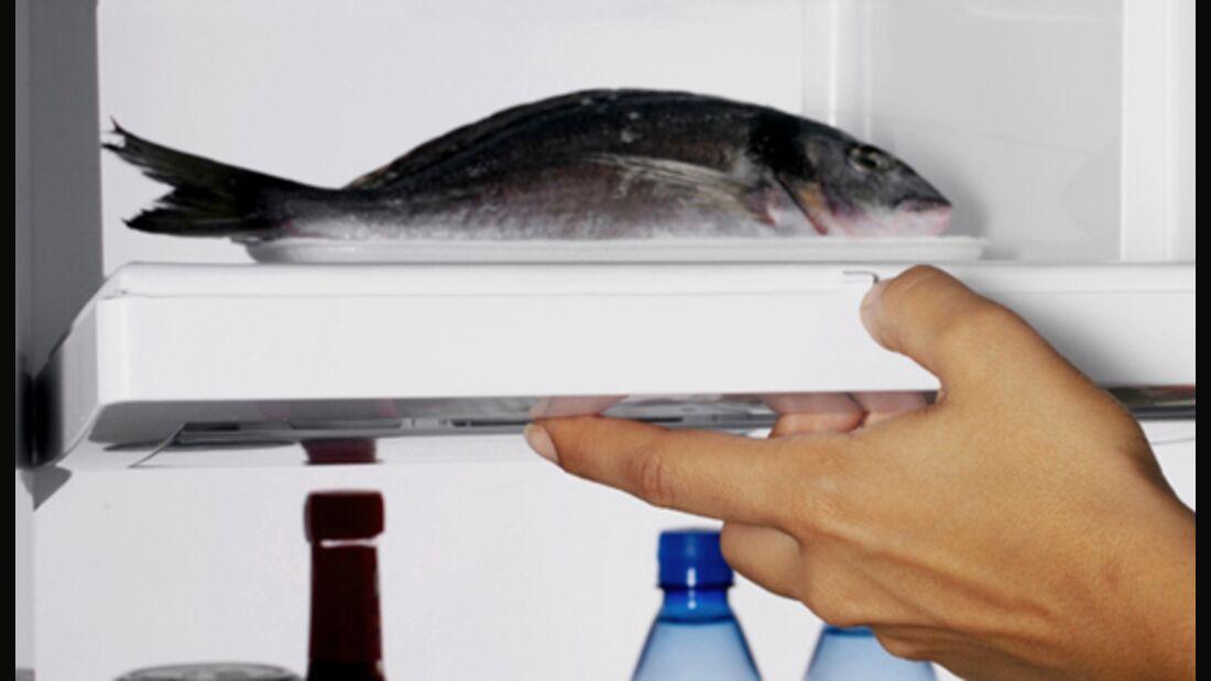 Fisch bleibt im Gefrierschrank länger frisch