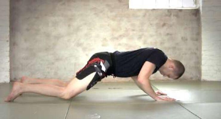 Flache Liegestütze für Schultern, Rücken, Arme und die Rumpfmuskulatur (sieht leichter aus, als es ist)