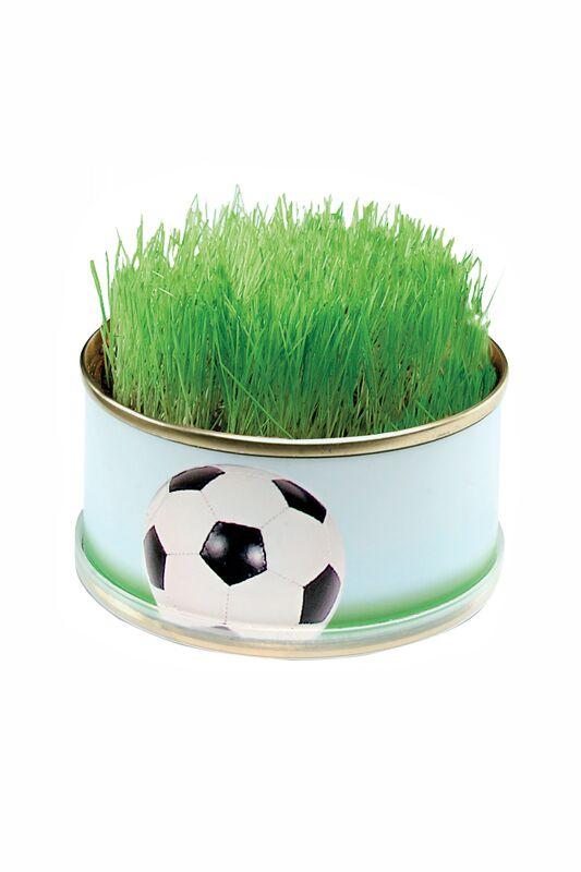Fußballrasen von KSI Werbeartikel