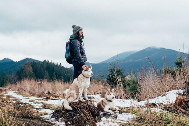 Geschenktipps für Frauen: Nordic Husky Walking Tour