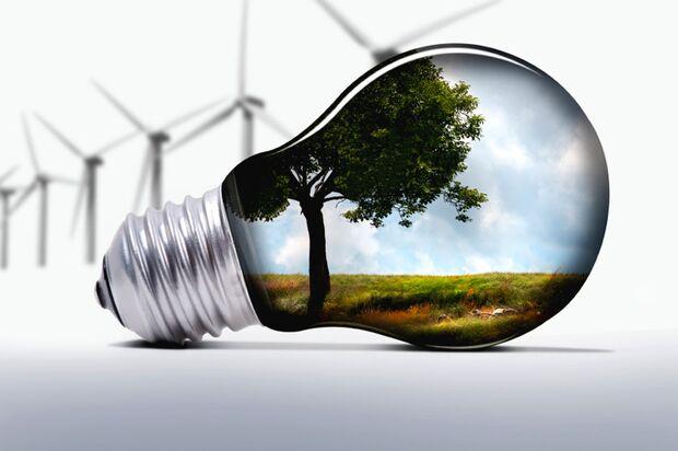 Grüne Energie schützt die Natur