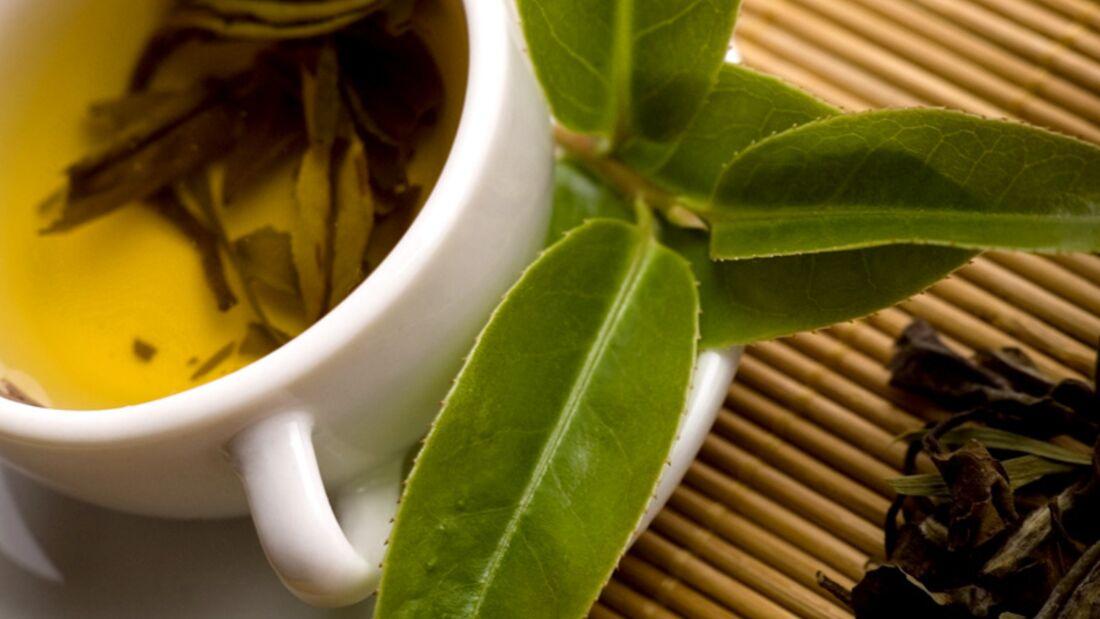 Grüner Tee unterstützt sogar die Potenz