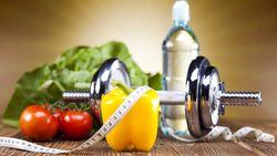Grundlagen der Sporternährung