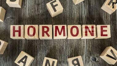Hormone: Die Botschafter unseres Körpers