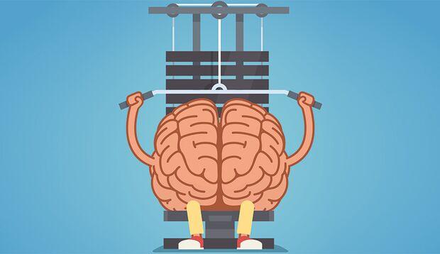 IQ-Training: Sport macht schlau