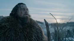 """In """"The Revenant – Der Rückkehrer"""" kämpft Leonardo DiCaprio erst mit einem Grizzly und dann ums Überleben in der Wildnis."""