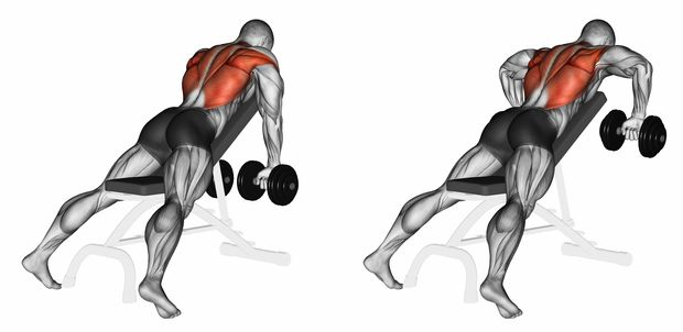 Incline,Bench,Two,Arm,Dumbbell,Row.,3d,Illustration