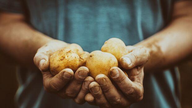 Kartoffeln gehören zu den am meisten sättigenden Lebensmitteln