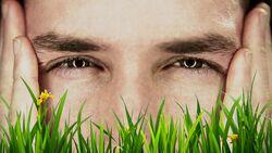 Kitzeln Ihnen die Gräserpollen auch schon in der Nase?