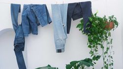 Levi's Made & Crafted / Denim-Pflege