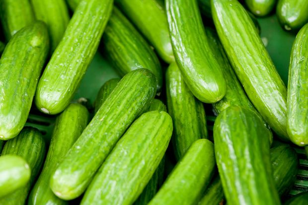 Low Carb-Lebensmittel zum Abnehmen unter 5 g Kohlenhydrate pro 100 g