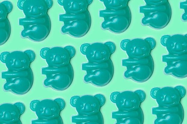 Lush Koala Charity Soap