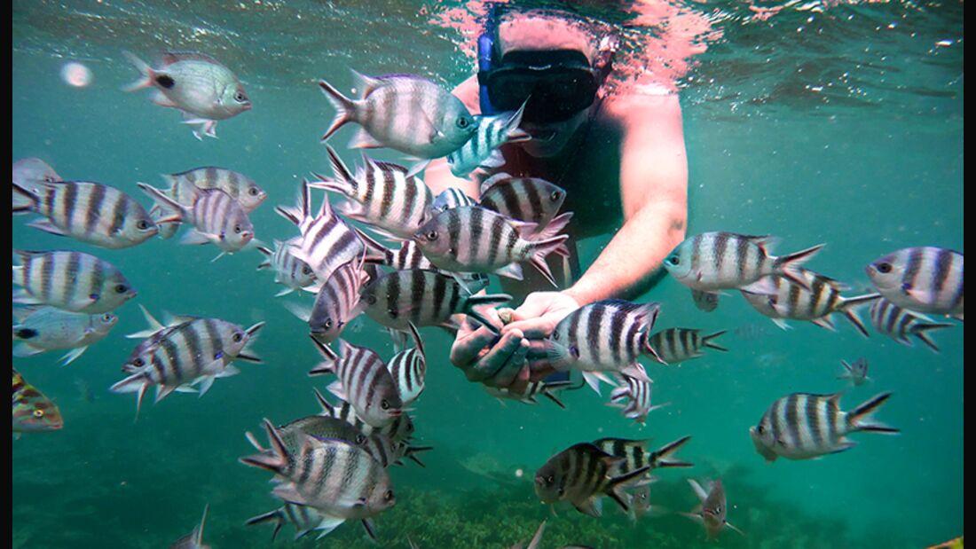 Mauritius ist fast komplett von einem Riff umgeben