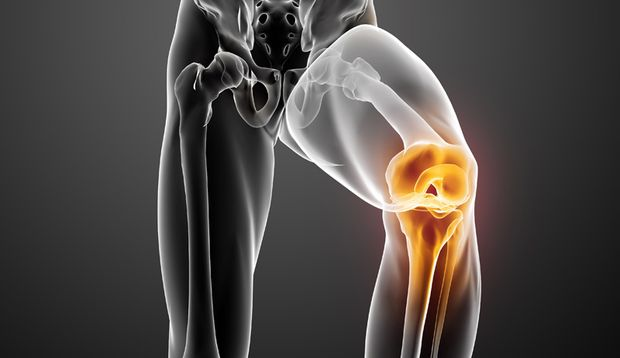 Meniskus: Stoßdämpfer im Knie