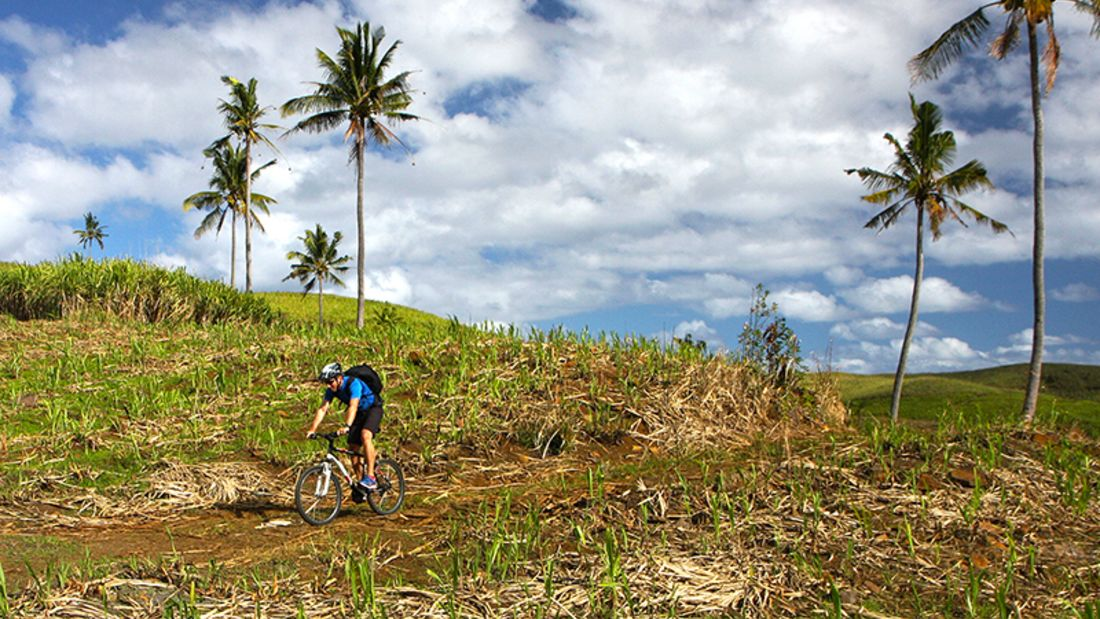 Mountainbiking auf Mauritius:  Holperpfade durch die Zuckerrohrfelder