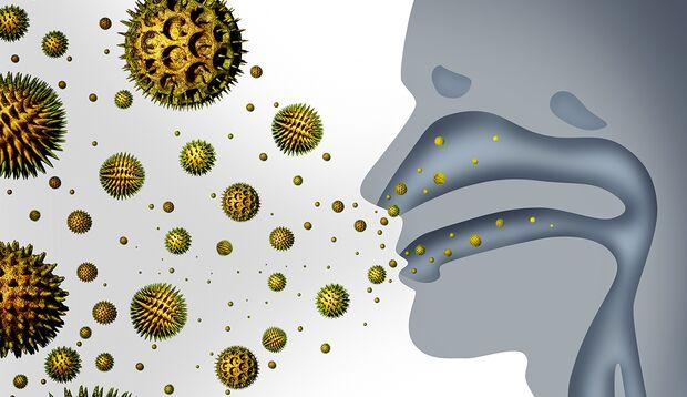 Nasensekret filtert Krankheitserreger, Schadstoffe und Staub aus der Luft